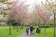A women and child walk a dog in Herbert Park on 06th April 2017 in Dublin, Republic of Ireland. Dublin is the largest city and capital of the Republic of Ireland.