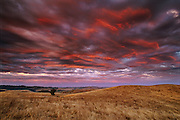 Sky of Fire, sunset after a thunder storm in the coastal mountains near Bodega, in Sonoma County, California.