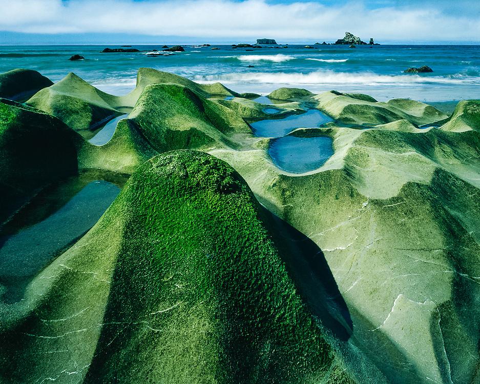 Eroded beach boulder, Rialto Beach, Olympic National Park, Washington, USA