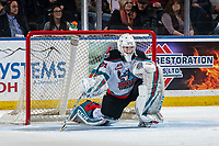 KELOWNA, BC - JANUARY 11: Cole Schwebius #31 of the Kelowna Rockets stretches in net against the Kamloops Blazers at Prospera Place on January 11, 2020 in Kelowna, Canada. (Photo by Marissa Baecker/Shoot the Breeze)