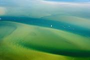 Nederland, Friesland, Waddenzee, 05-08-2014; vaargeul door Waddenzee bij hoogwater. Waddenzee met ondiepten en platen<br /> Waterway through the Wadden Sea.<br /> luchtfoto (toeslag op standard tarieven);<br /> aerial photo (additional fee required);<br /> copyright foto/photo Siebe Swart