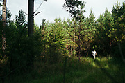 """MERIDIAN, MS – AUGUST 3, 2018: Clayton George, 57, walks past Loblolly pine trees. As a resident of Tennessee, George makes the four hour drive south every two weeks to check on his family's 400 acre tract, and visit his father who still lives there.<br /> <br /> In 1987, George and a friend walked in rows planting the family's first batch of Loblolly pine, where soybeans, wheat and cattle once covered the family's 400 acres.  The shift to timber was largely prompted by the Conservation Reserve Program, a popular new farm subsidy in the 1980s that encouraged farmers to reforest depleted land by paying them for every acre of trees planted. Since 1926, the George family had made a good living from their eastern Mississippi farm, but the decline of soybeans and other crops eventually led George to consider growing trees instead –a crop that landowners throughout the south believed would bring in easy money. Thirty years later, however, the same landowners are now facing unexpected financial hardship. Stumpage prices have been on a steady decline – as much as 45% since 2007 – and landowners are rethinking timber as a worthwhile investment. """"""""We figured we''d plant trees and come back and harvest it in 30 years, and in the meantime go into town to make a living doing something else,"""" George said. As co-owner of the family acreage with three other family members, George always considered himself the most nostalgic Now, as he patiently awaits for right time to harvest a 30 year investment, even he considers the future of the land uncertain. CREDIT: Bob Miller for The Wall Street Journal<br /> TIMBER_AL"""