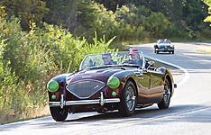 064 1955 Austin-Healey 100-4 BN2