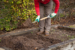 Double digging over bare soil in a raised bed in autumn