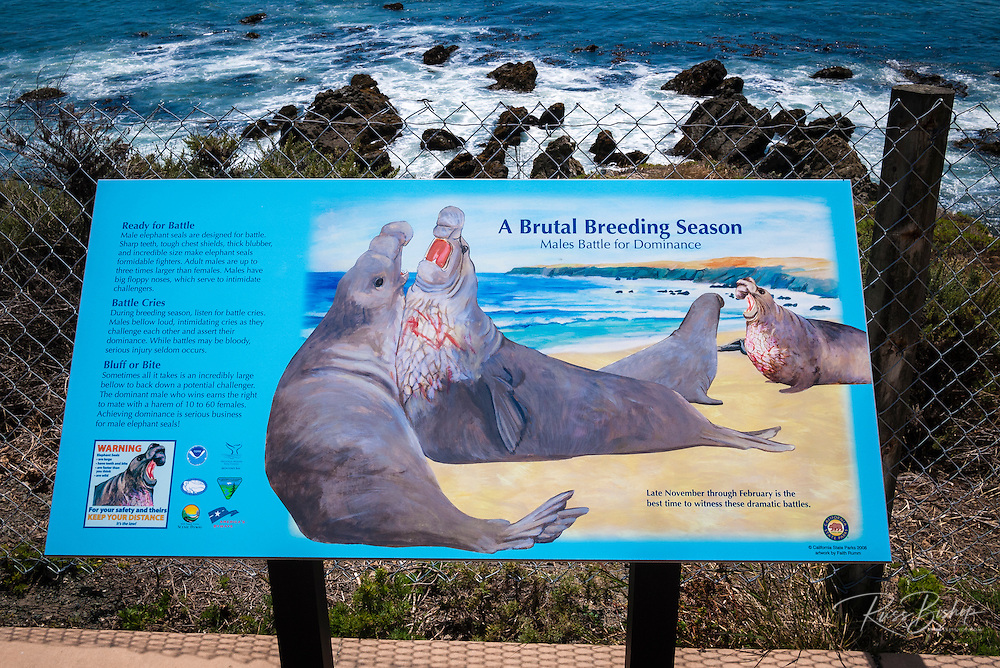 Interpretive sign at the Piedras Blancas Elephant Seal Rookery, San Simeon, California USA