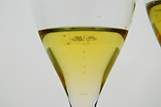 Analytical wine tasting in a neutral white environment a backlit white screen with a champagne glasses The first glass in the line filled with champagne seen backlit contrasty with bubbles rising to the surface at the Maison de la Champagne (the House of the Champagne Region), the head quarters of CIVC (Comite Interprofessionnel du Vin de Champagne) in Epernay, Champagne, Marne, Ardennes, France