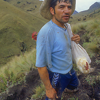 Homesteader from Amazon cloud forests enroute to market in Bolivar.