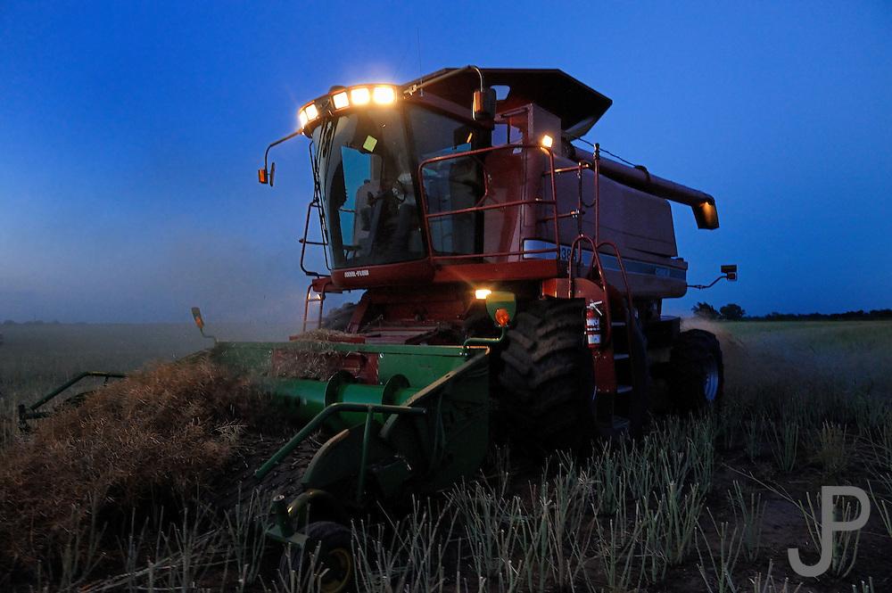 Custom harvester Justin Spielman from Newkirk, Oklahoma combines a field of canola near El Reno as night falls.