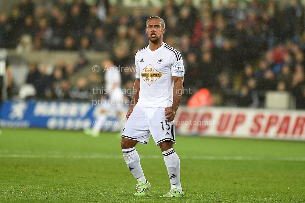 Wayne Routledge of Swansea city reacts after missing a goal chance.  Barclays Premier League match, Swansea city v Tottenham Hotspur at the Liberty Stadium in Swansea, South Wales on Sunday 14th December 2014<br /> pic by Andrew Orchard, Andrew Orchard sports photography.