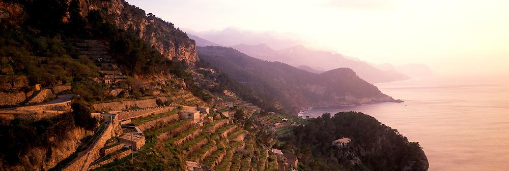SPAIN, BALEARIC ISLANDS MALLORCA; terraced fields near village of Benalbufar on island's rugged western coast