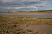 Memorial cross for drowning victim amidst mudflats and saltings vegetation on the tidal Butley Creek rivers, Suffolk, England