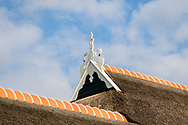 25-04-2020: Blesdijke, Weststellingwerf - Uilenbord, ûleboerd, ûleboard