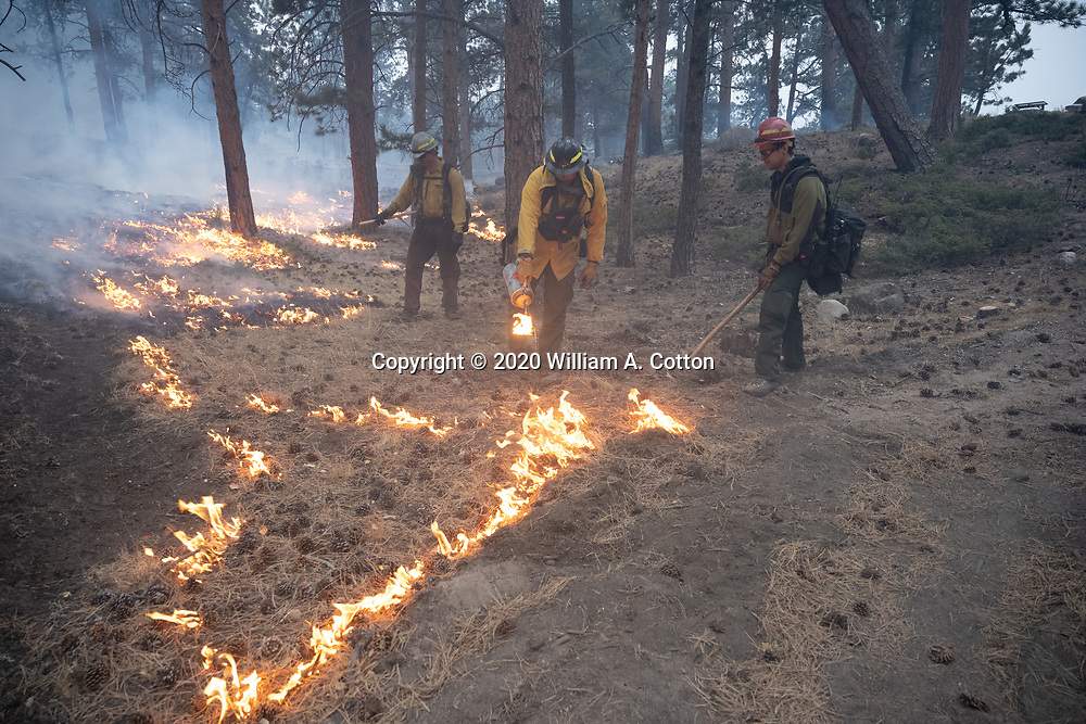 Larimer County Sheriff's Office and Platteville Fire Department firefighters team up to burn unburned fuel between the East Troublesome Fire and structures in Rocky Mountain National Park, October 24, 2020. © 2020 William A. Cotton