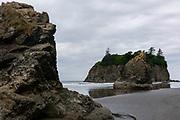 Abbey Island Beach, Olympic National Park, Washington, USA.