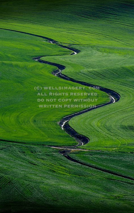 Image of irrigation in the Palouse wheatfields, eastern Washington, Pacific Northwest by Randy Wells