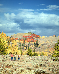Elk hunters, autumn colors, Bridger Teton National Forest, Jackson Hole, Wyoming