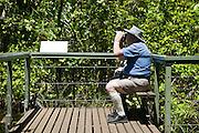 """Armchair"" Tourist, Litchfield National Park, Northern Territory, Australia"