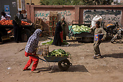 A young woman struggles with a wheelbarrow laden with produce at the weekly market at Qurna, a village on the West Bank of Luxor, Nile Valley, Egypt. Balancing vegetables and a basket, the girl pushes everything along a dirt road where other marketeers and stallholders sell their goods such as cabbages and lettuces. Amidst the bustle of this busy regular event, people from many miles around have come to trade and buy their provisions.