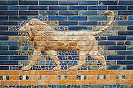 Coloured glazed brick panels depicting Lions stiding from the facade of the Throne Room dating from 604-562 BC. Babylon (present day Iraq). The throne room is situated in the third courtyard of the complex of the royal palace. Its 56 meters wide facade was decorated with coloured glazed bricks. A tentative reconstruction shows the composition of the upper part of the facade, including the stylised palms and geometric patterned registers. Two original sections are displayed on the left next to the Ishtar Gate. The lower part f the facade with representations of the striding lions was predominantly reconstructed from the original baked brick fragments. The frieze of lions was presumably arranged symmetrically so the animals faced towards the central main entrance to the Throne room. The throne room was excavated by Robert Koldewey between 1899 and 1917. It was used as an official reception room. The Vorderasiatisches Museum, part of the Pergamon Museum, Berlin .<br /> <br /> If you prefer to buy from our ALAMY PHOTO LIBRARY  Collection visit : https://www.alamy.com/portfolio/paul-williams-funkystock/babylon-antiquities.html<br /> <br /> Visit our ANCIENT WORLD PHOTO COLLECTIONS for more photos to download or buy as wall art prints https://funkystock.photoshelter.com/gallery-collection/Ancient-World-Art-Antiquities-Historic-Sites-Pictures-Images-of/C00006u26yqSkDOM
