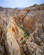 Established in order to preserve the Waterpocket Fold, a 100-mile long wrinkle in the earth's crust, Capitol Reef National Park is located near Torrey, Utah.