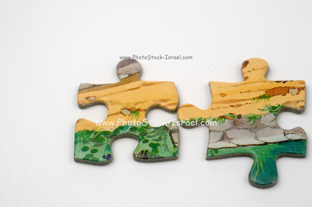Cutout of Matching Jigsaw Puzzle pieces on white background