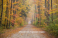 64776-01307 Road in fall color Schoolcraft County Upper Peninsula Michigan