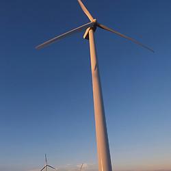 Windmills at power-producing wind farm in West Texas near Iraan. ©Bob Daemmrich