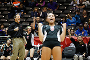 Argyle's head coach, Clark Oberle, celebrates a point against Wylie in the Class 3A semi-finals at the Curtis Culwell Center in Garland, Texas, on November 16, 2012.  (Stan Olszewski/The Dallas Morning News)