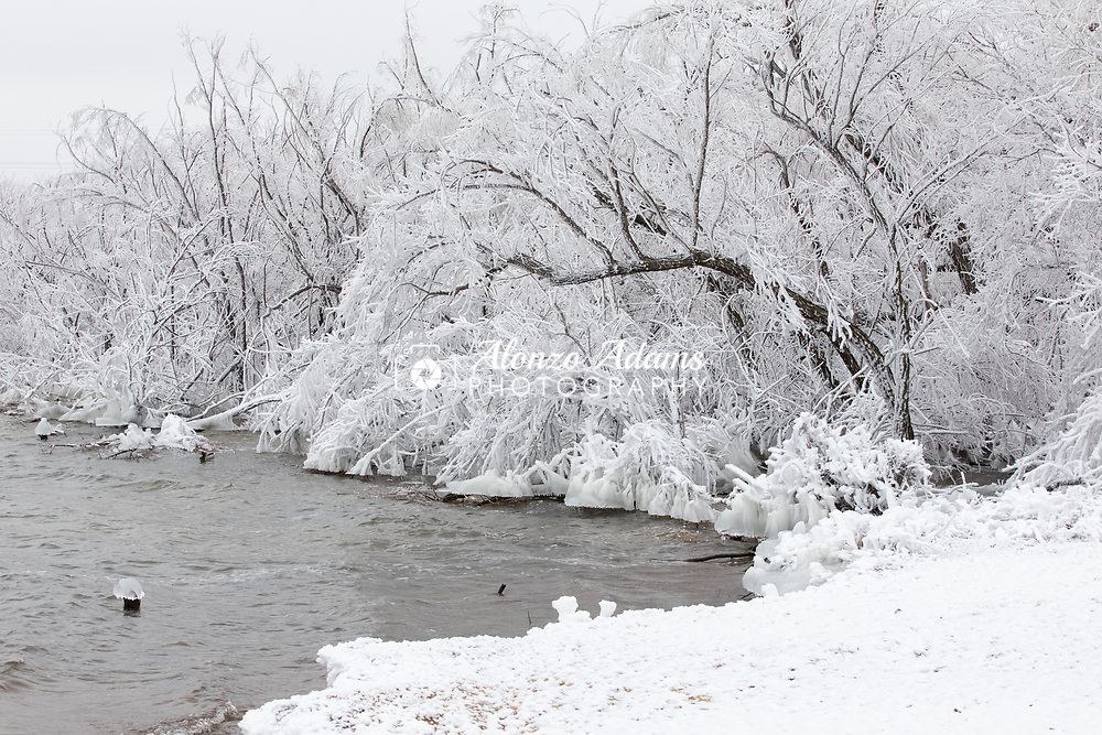 Rime ice covers trees along the south shores of Lake Hefner in Oklahoma City on Thursday, Feb. 11, 2021. Photo copyright © 2021 Alonzo J. Adams.
