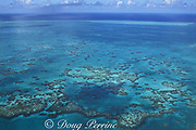 patch reefs in lagoon, Lighthouse Reef Atoll, Belize, <br /> Central America ( Caribbean Sea )