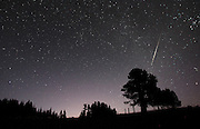 A Perseid Meteor makes its entrance into Earth's atmosphere, burning up for all to see from Table Mountain near Ellensburg. (Steve Ringman / The Seattle Times)