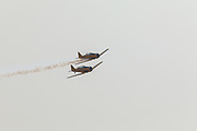 Harvards of Yellow Thunder flying aerial demonstration at Airshow of the Cascades.