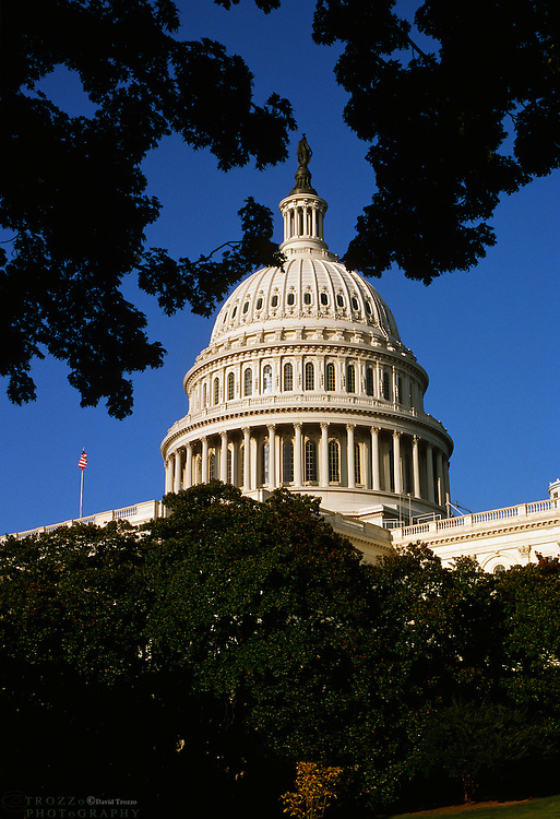 Washington D.C.--The United States Capitol Building serves as the seat of government for the United States Congress, the legislative branch of the U.S. federal government.It is an example of the Neoclassical architecture style. The statue on top of the dome is the Statue of Freedom.