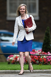 © Licensed to London News Pictures . 05/07/2016 . London , UK . ELIZABETH TRUSS arrives . Conservative Party cabinet meeting on Downing Street , London . Photo credit: Joel Goodman/LNP