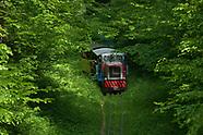 Puszcza Białowieska. Kolejka leśna