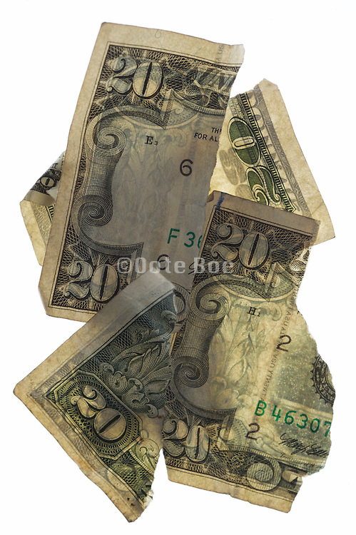 torn up 20 dollars bills