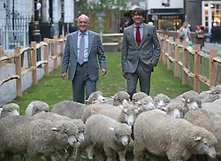 © Licensed to London News Pictures. 05/10/2015. London, UK.  ALEX JAMES (L) joins NICHOLAS COLERIDGE for the launch of Wool Week 2015 as Savile Row is transformed with sheep and grass.  Photo credit: Peter Macdiarmid/LNP