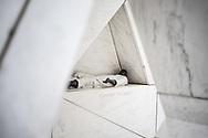NEW YORK  2020V10<br /> Monument vid FN-huset på Manhattan.<br /> <br /> Foto: Per Danielsson/Projekt.P