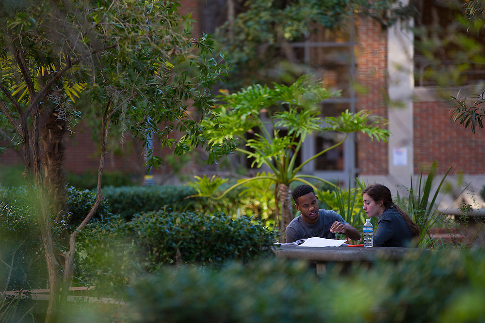 Stock photographs of the University of Florida Campus in Gainesville, Florida.