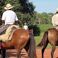South America, Brazil, Pantanal. Cowboys of the Pantanal, or Pantaneiros, at Caiman Ecological Reserve.