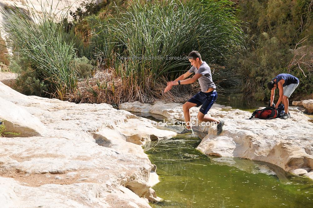 Ein Avdat, sweet water spring in the negev desert, israel near Kibbutz Sde Boker