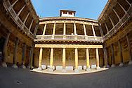 University Court Yard building -Padua, Veneto - Italy