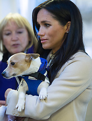 The Duchess of Sussex meets a Jack Russell called Minnie during a visit to Mayhew, an animal welfare charity she is now supporting as patron, at its offices in north-west London.