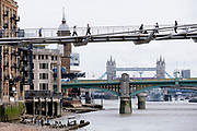 With Tower Bridge in the far distance, and the nearer green Southwark Bridge, Londoners cross the Millennium Bridge over the river Thames, on 13th September 2021, in London, England. London's newest river crossing for 100-plus years coincided with the Millennium in 2000. It was hurriedly finished and opened to the public on 10 June 2000 when an estimated 100,000 people crossed it to discover the structure oscillated so much that it was forced to close 2 days later. Over the next 18 months designers added dampeners to stop its wobble but it already symbolised what was embarrassing and failing in British pride. Now the British Standard code of bridge loading has been updated to cover the swaying phenomenon, referred to as 'Synchronous Lateral Excitation'.