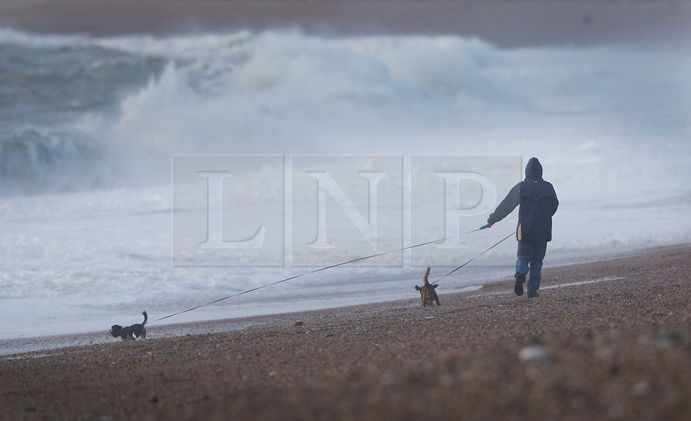 © Licensed to London News Pictures. 20/11/2016. Newhaven, UK. A man walks his dogs on the beach at Seaford as storm Angus whips up the sea. The south east has experienced winds of up to 80 miles per hour as the first named storm of the season hits. Photo credit: Peter Macdiarmid/LNP