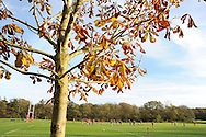 a general view as the Wales rugby team train in the autumn sunshine at the Vale resort, Hensol, near Cardiff , South Wales on Tuesday 12th November 2013. pic by Andrew Orchard, Andrew Orchard sports photography,