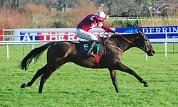 Tycoon Prince ridden by Davy Russell go on to win the Paddy Power Cash Card PPlus Beginners Chase during day two of the Leopardstown Christmas Festival at Leopardstown Racecourse.