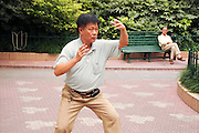 China, Shanghai Tai Chi in a Zen garden