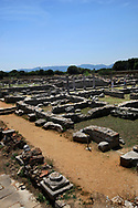 The Forum in Philippi, near Kavala, Greece<br /><br />Photo by Dennis Brack