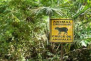Wildlife Sign in forest, Animal Crossing, Panama, Central America, Gamboa Reserve, Parque Nacional Soberania, Agouti